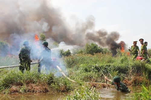 Diễn tập phòng, chống cháy rừng ở huyện Tân Phước