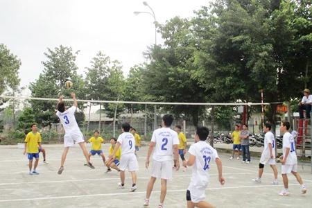 Giải bóng chuyền truyền thống tỉnh Tiền Giang năm 2015. Ảnh: Vĩnh Sơn