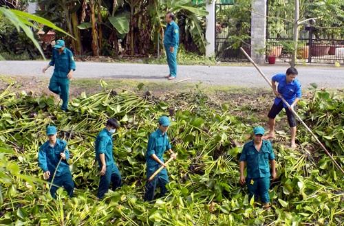 Dân quân tham gia vớt lục bình trên tuyến kênh lộ Dây Thép